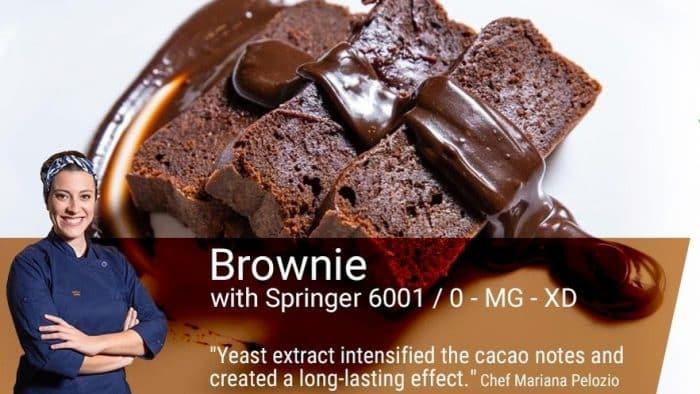 Food Ingredients South America Biospringer